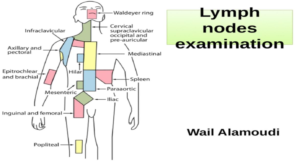Lymph Nodes Examination