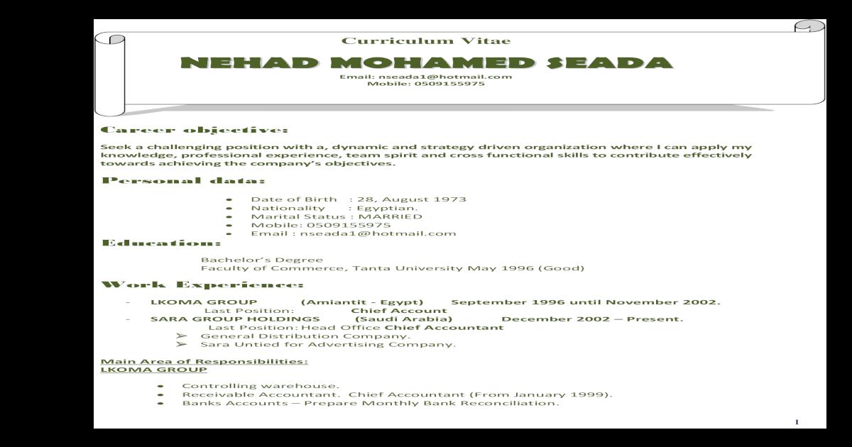 NEHAD  CV