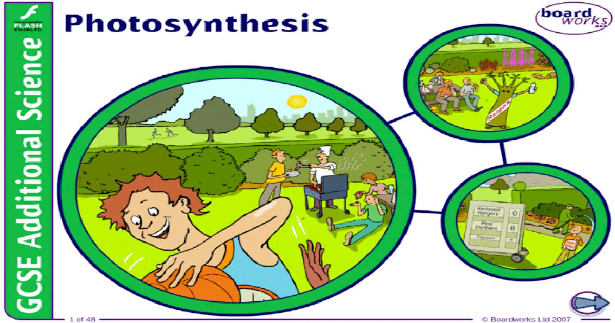 9  Photosynthesis - IGCSE Coordinated Sciences - ??PPT