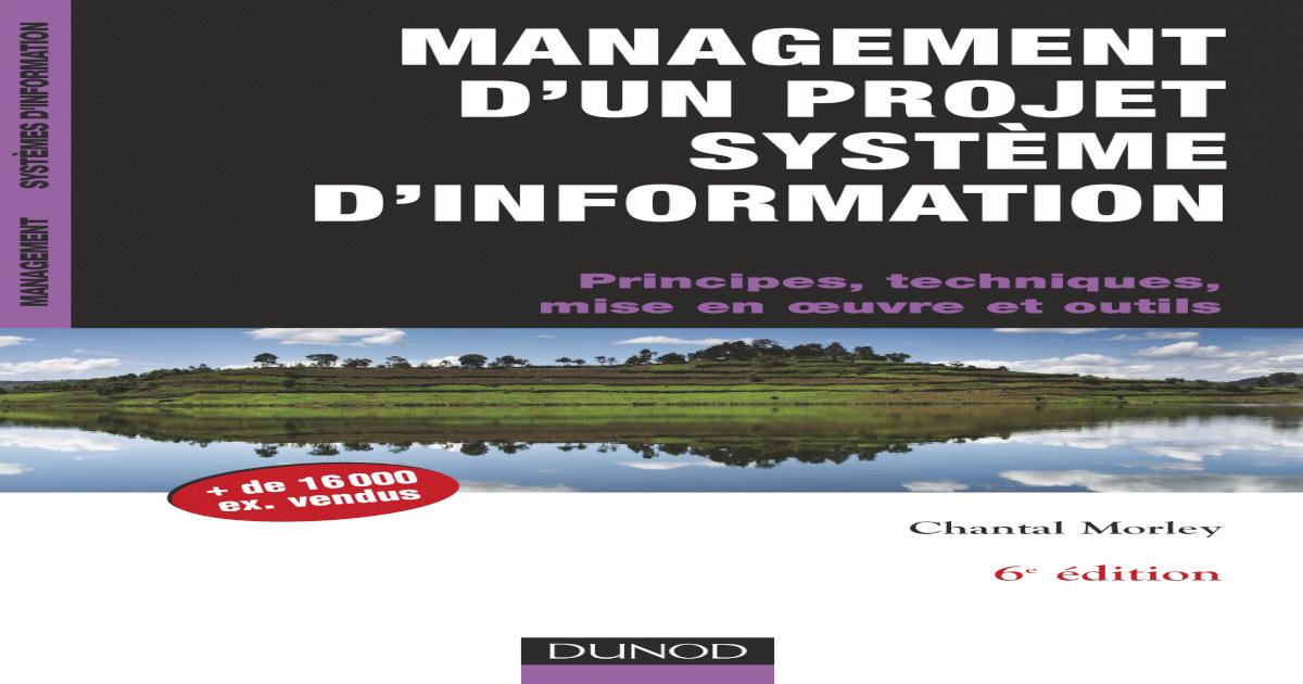 foto de Management d'un Projet Systme d'Information - Principes ...