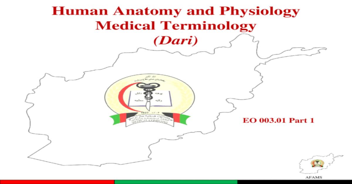 Afams Human Anatomy And Physiology Medical Terminology Dari Eo