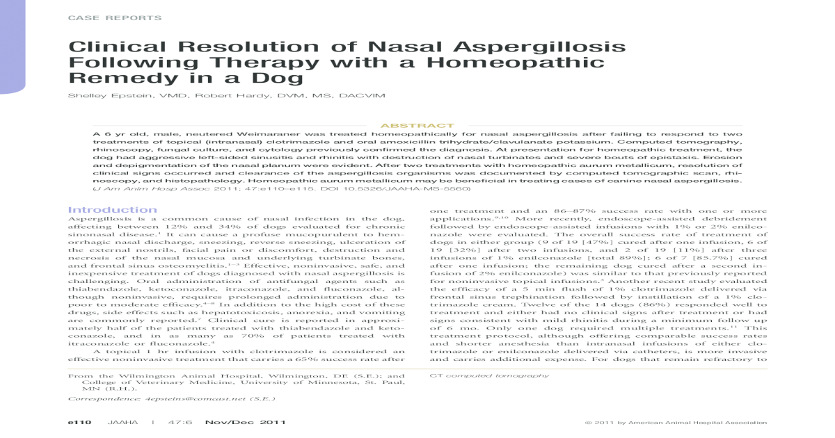 Clinical Resolution of Nasal Aspergillosis Following Therapy