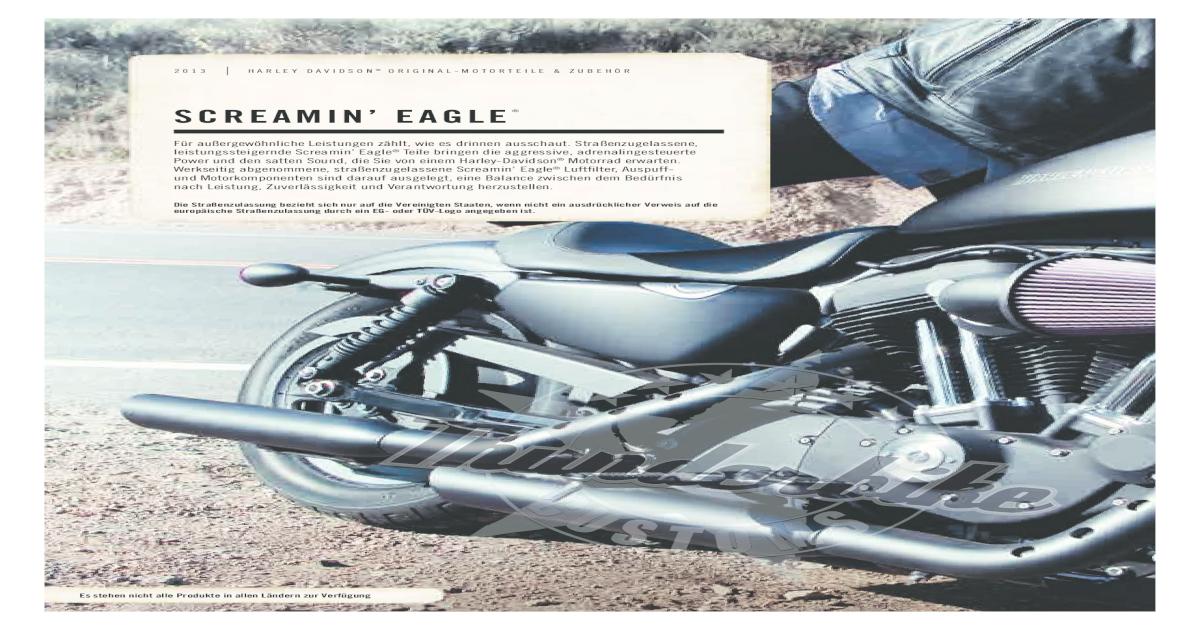 FLS Bremsscheibenschloss mit Alarm für Harley Softail Slim