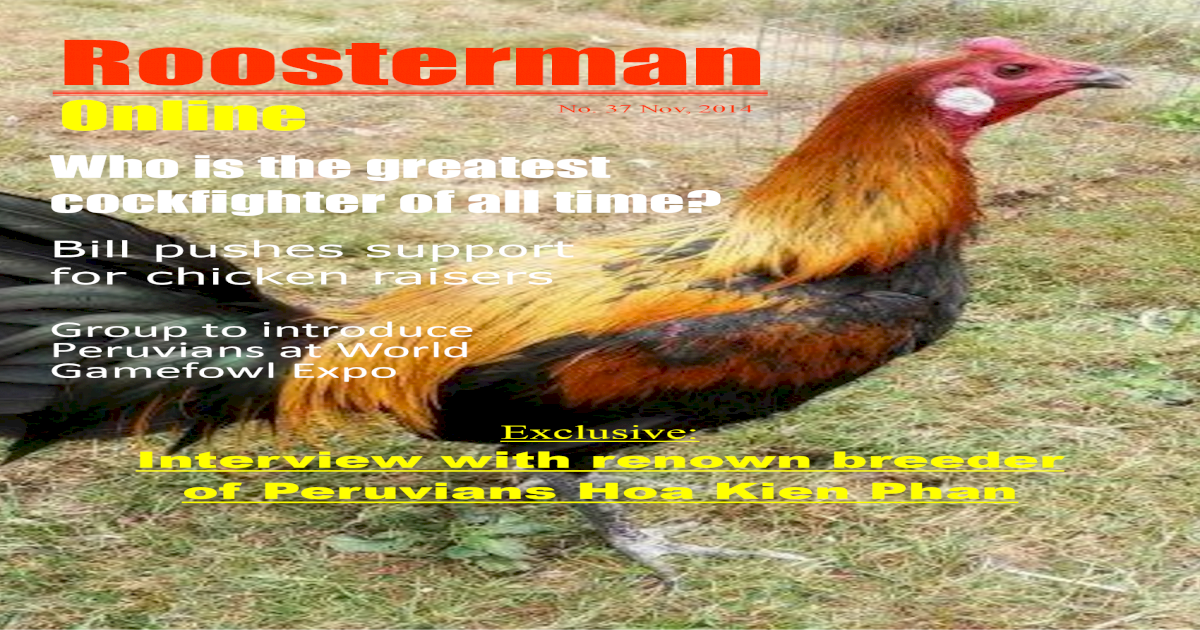 Roosterman the World Gamefowl Expo,     ans vitamins and
