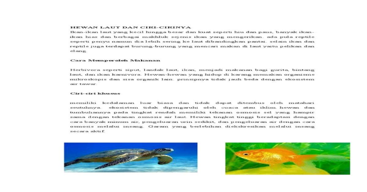 570 Gambar Hewan Yang Hidup Di Air Beserta Ciri-cirinya HD Terbaru