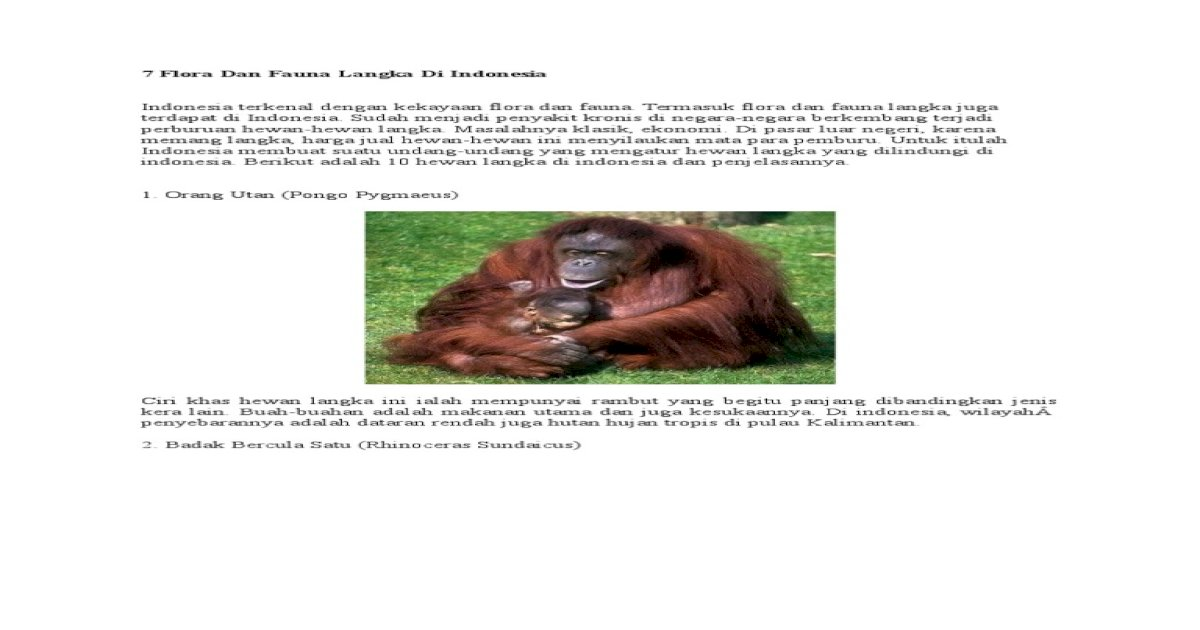 64 Gambar Hewan Langka Beserta Penjelasan HD