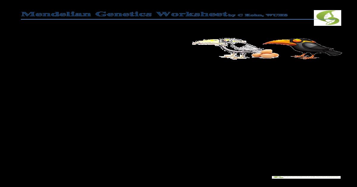 Mendelian Genetics Worksheet