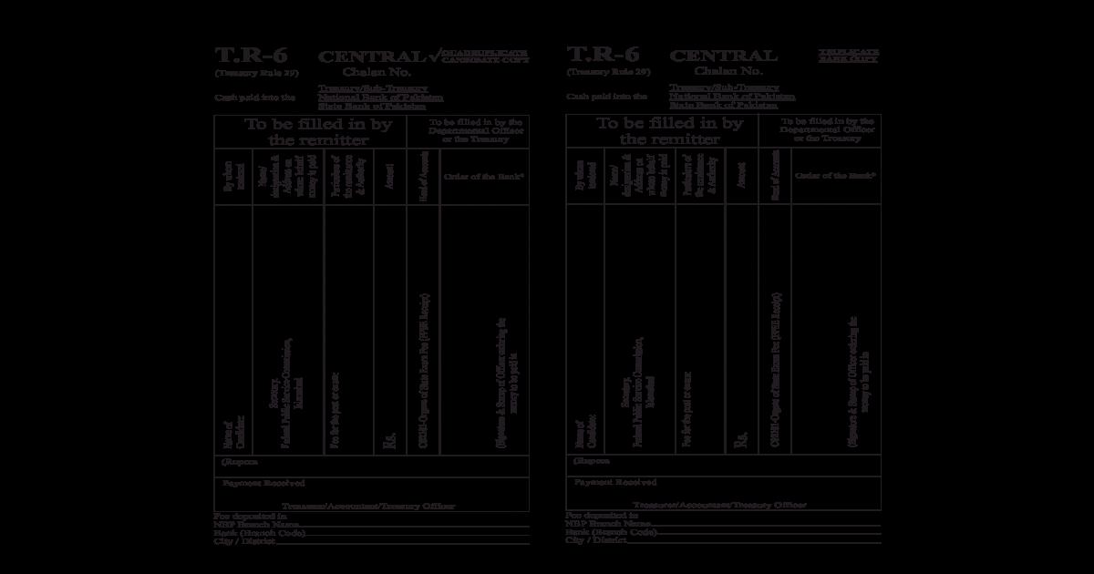 Challan Form CSS 2009