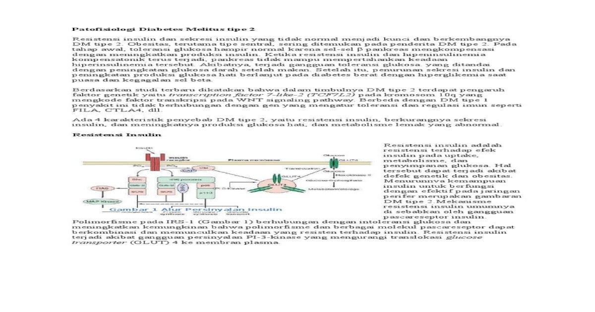 patofisiologi diabetes melitus tipe 1