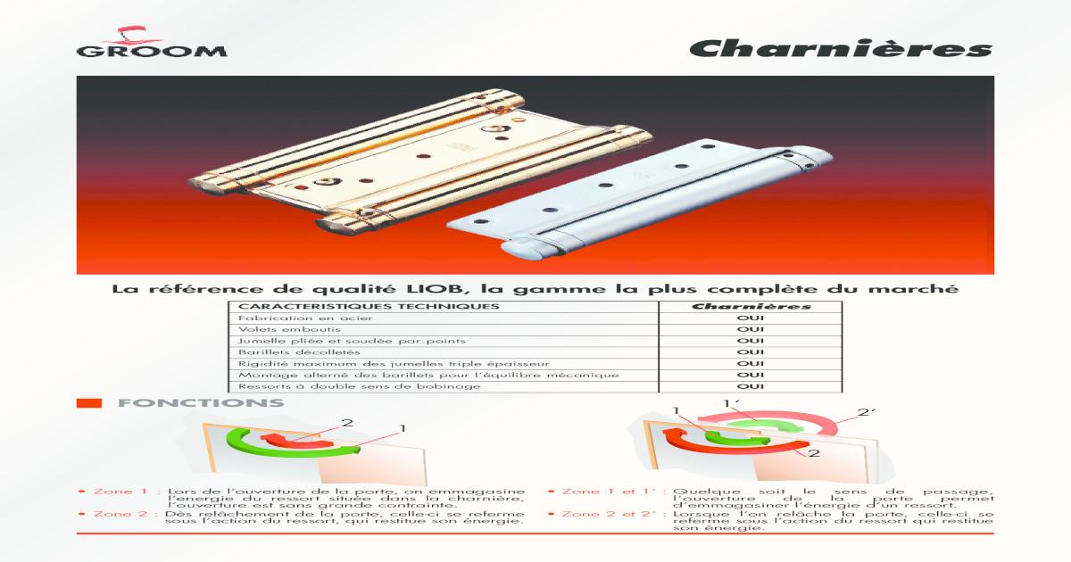 acier Charnières double action pour porte de largeur 650 mm Liob GROOM