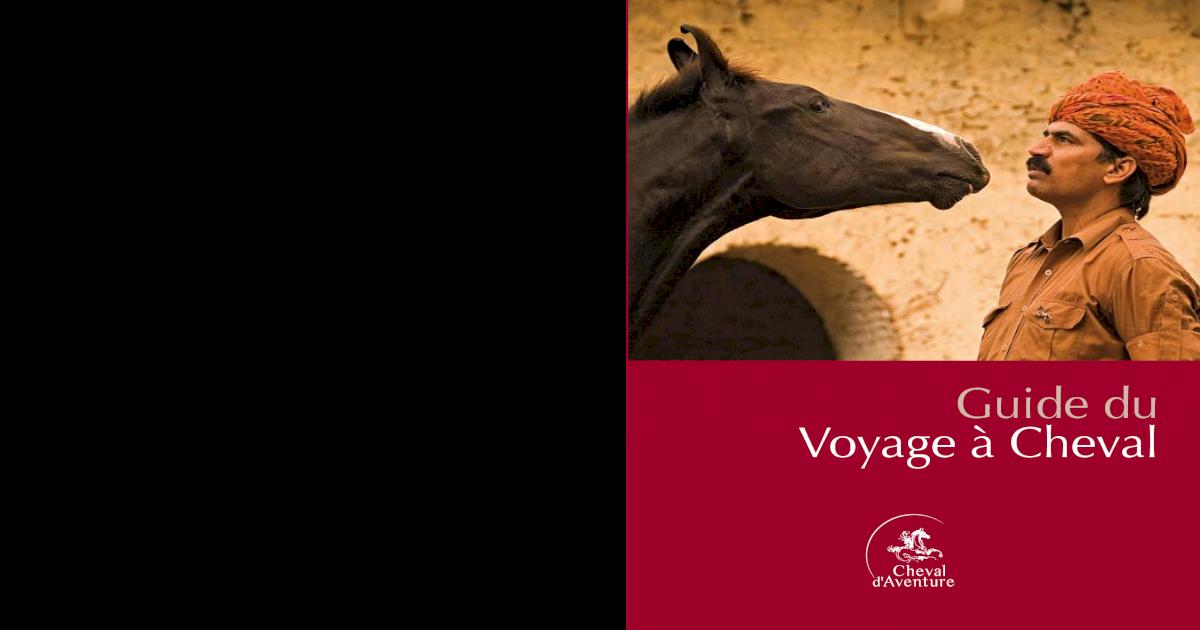 Taj collection en cuir course poney en noir et havane cob /& complet