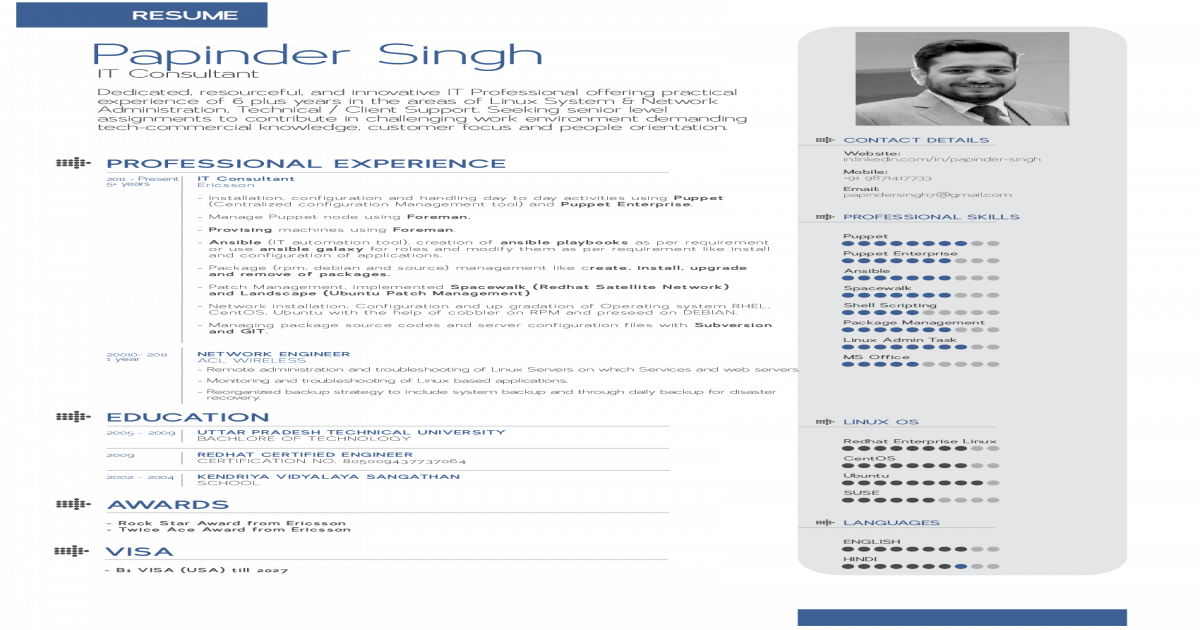 Papinder Singh - IT Consultant - B Tech (IT)