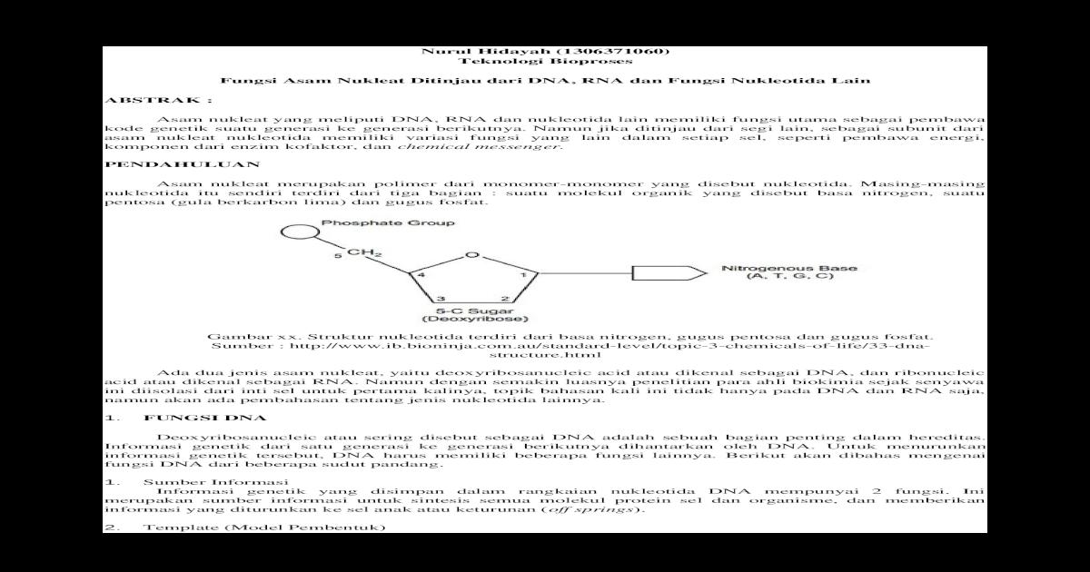 Bagian Inti Sel Yang Kaya Dna - DNA Informasi