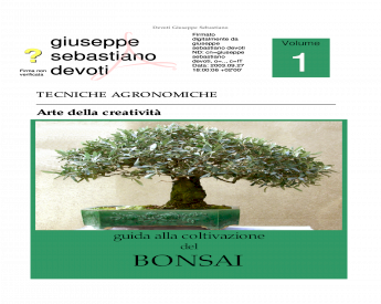 Malus SYLVESTRIS-Bonsai 30 Semi-Semina tutto l/'anno