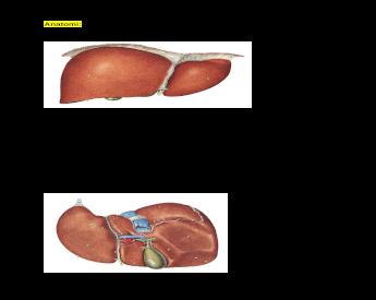 impressionio duodenalis recenzii despre tratamentul pentru vierme rotunde